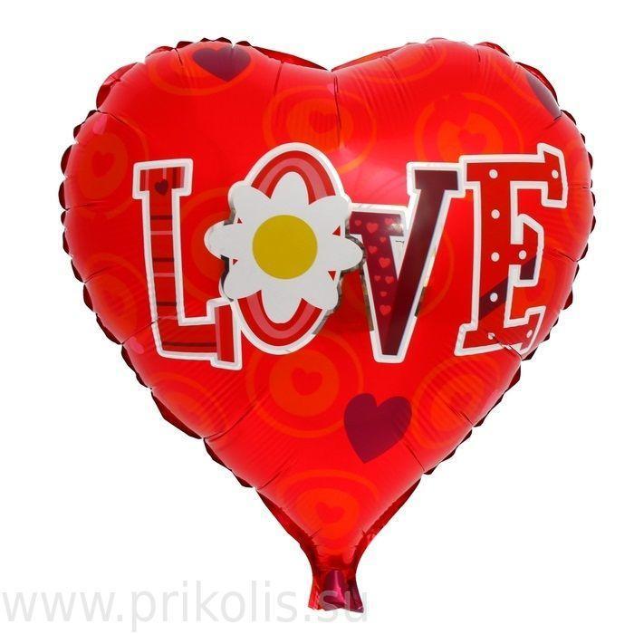 Фольгированные воздушные шары Ромашка любви